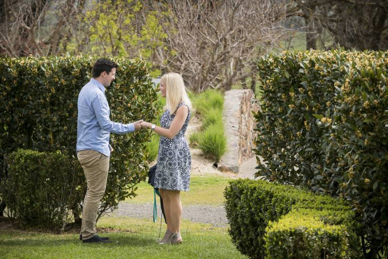 A Beautiful Winery Proposal